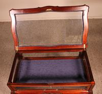 Small Mahogany Showcase Cabinet from Jeweler or Exhibition 19th Century (10 of 12)