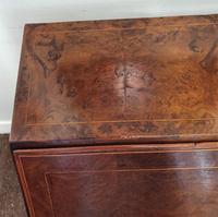 Fine & Rare 18th Century Burr Oak Bureau (7 of 7)