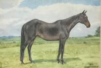 ALDERSON SISTERS WATERCOLOUR ' RACEHORSE IN  A COUNTRY  LANDSCAPE'