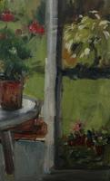 In the Conservatory by Diana Perowne (5 of 7)