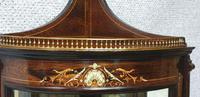 Top Quality Rosewood Display Cabinet (10 of 13)