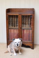 Small Proportioned Oak Glazed Bookcase (5 of 10)