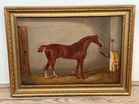 Victorian Oil Painting Chestnut Horse Portrait In Stable Signed Edwin Loder (2 of 42)
