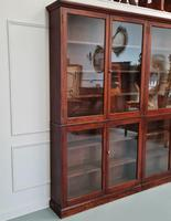 Large Antique Museum Cabinet c.1900 (7 of 7)