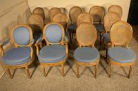Set Of 12 Chairs And Two Armchairs Louis XVI 18th Century (11 of 11)