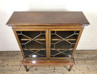 Mahogany Glazed Bookcase or Display Cabinet (8 of 12)