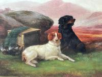 """19th Century Oil Painting Sporting """"Game Dogs"""" Signed Robert Cleminson (16 of 48)"""