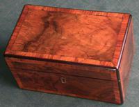 Victorian Box 19th Century