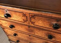 Victorian Original Painted Pine Chest of Drawers (6 of 14)