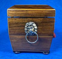 Regency Rosewood Twin Section Tea Caddy (3 of 12)