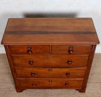 Walnut Chest of Drawers Victorian 19th Century (8 of 11)