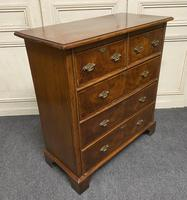 Lovely Antique Burr Walnut Chest of Drawers (14 of 14)
