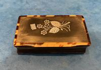 Victorian Horn & Tortoiseshell Snuff Box with Silver Inlay (2 of 16)