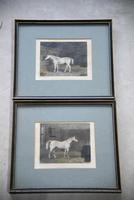 Pair Antique Race Horse Engravings (11 of 11)