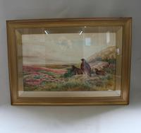 Pair of Gilt Framed Watercolour Paintings of Grouse (2 of 9)