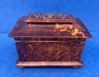 Victorian Tortoiseshell Tea Caddy with Mother of Pearl Inlay (13 of 20)
