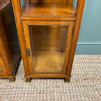 Unusual Pair of Victorian Satinwood Antique Cabinets (6 of 6)
