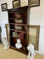 Superb Large 19th Century Mahogany Open Bookcase (2 of 8)
