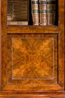 19th Century Walnut Bookcase/Chinese Cabinet (4 of 5)