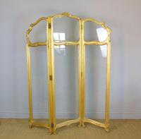 French Gilt Rococo Three Fold Glazed Screen (3 of 11)