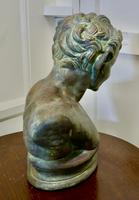 Bust of a Young Satyr in a Bronze Patina (5 of 7)