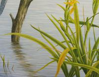 Oil on Canvas Study of a Kingfisher Listed Artist Geoffrey Campbell Black (3 of 10)