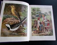 1870-81 Leather Bound Volume of London Illustrated Almanack (4 of 5)