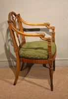 19th Century Carved Armchair in Satin Birch & Satinwood (4 of 7)