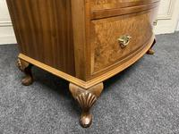 Burr Walnut Bow Front Chest (5 of 12)
