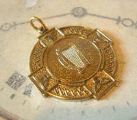 Vintage Pocket Watch Chain Fob 1940s Large Golden Gilt Irish Harp Shield Fob Nos (2 of 8)