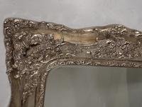 A Most unusual Mid 19th Century Rococo Mirror (4 of 4)