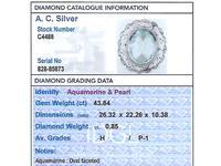 43.84 ct Aquamarine, 0.85 ct Diamond and Pearl, Platinum Brooch - Antique Circa 1910 (3 of 9)
