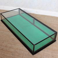 Counter Top Shop Display Cabinet Glazed Ebonised 19th Century Glass (14 of 14)