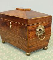 Antique Rosewood Tea Caddy (13 of 15)