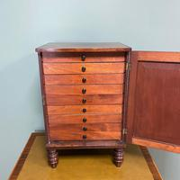 Spectacular Small Regency Antique Mahogany Collectors Cabinet (2 of 8)