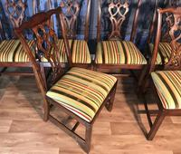Set of Ten Georgian Style Mahogany Dining Chairs (6 of 13)