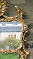 Stunning Twin Plate Rococo Mirror 19th Century (4 of 8)
