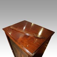 Regency Mahogany Library Cabinet (8 of 10)