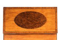 George III Period Satinwood & Burr Yew Tea Caddy (3 of 6)
