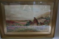 Pair of Gilt Framed Watercolour Paintings of Grouse (3 of 9)