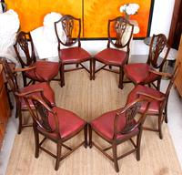Dining Table & 8 Chairs Mahogany 3.2 Metres Long Hepplewhite Stalker (11 of 16)