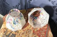 Pair of Edwardian Glass Light Shades (5 of 5)