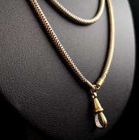 Victorian Snake Link Guard Chain (12 of 12)