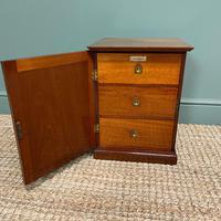 Small Victorian Mahogany Collectors Cabinet (5 of 6)