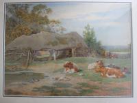 Antique Original Watercolour - Cows Resting - Charles James Adams c.1900 (7 of 9)