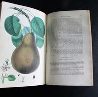 1833 The Practical Gardener & Modern Horticulturist by Charles McIntosh, 2 Volume Set (7 of 8)