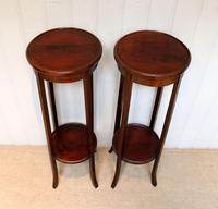 Pair of Edwardian Mahogany Jardinière Stands (9 of 10)