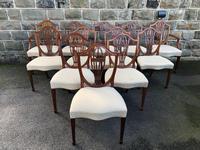 Set of 12 Mahogany Hepplewhite Style Dining Chairs