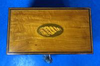 George III Satinwood Twin Tea Caddy with Prince of Wales Inlay (7 of 15)