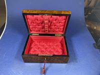 French 19th Century Burr Cedar Box. (4 of 14)